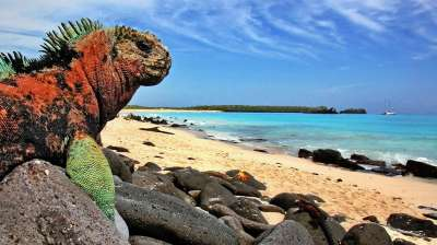 galapagos-islands_1
